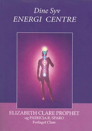 Dine Syv Energicentre 337x480